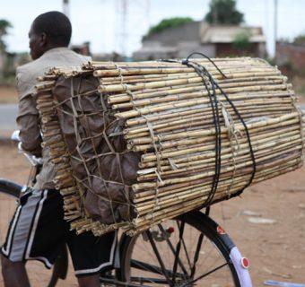 Mozambique: Pole Position